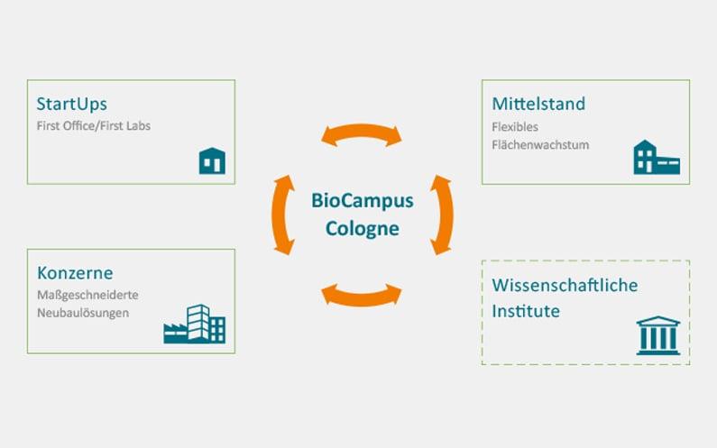 VV_Blog_BioCampus_2019_infografik2